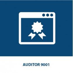 Auditor 9001 (24 CFP Ingegneri)