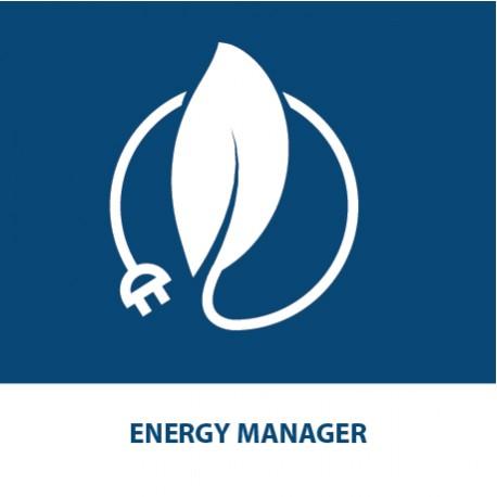 Energy Manager (40 CFP Ingegneri) (28 CFP per Periti Industriali)