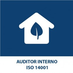 Internal Auditor ISO 14001